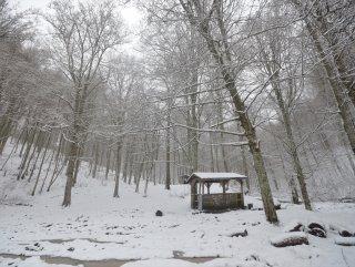 Istranca Ormanları beyazlar içinde