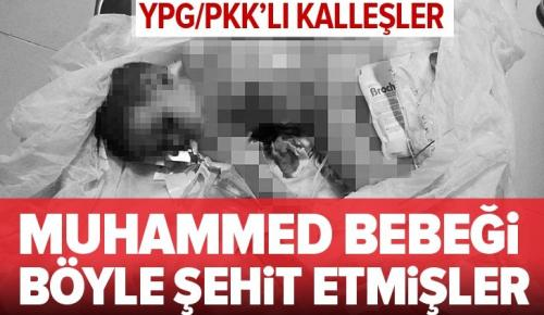 YPG/PKK'lı teröristler katletmişti! Muhammed bebek uykusunda şehit edilmiş .